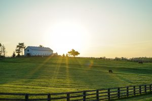 barn-cropland-daylight-2042161