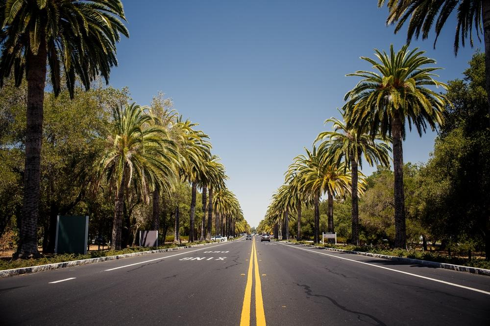 A road in california